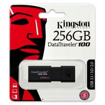 Kingston DataTraveler 256GB...